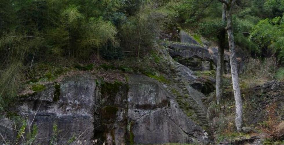 仙ノ山散策コース
