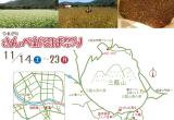 さんべ新そば祭り(11月14日~23日)